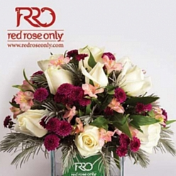 گل سرای Red Rose Only